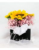 Pretty Sunflowers in a Square Box