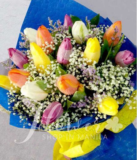 16 pcs. of Rainbow Mixed Tulips